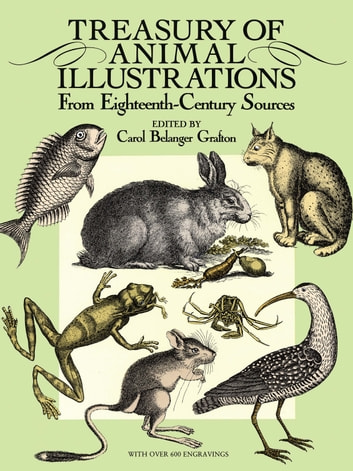 Treasury of Animal Illustrations - From Eighteenth-Century Sources eBook by