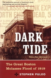 Dark Tide - The Great Molasses Flood of 1919 ebook by Stephen Puleo