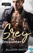 Grey: The Encounter ebook by Allison White