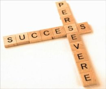 The Essential Guide on Perseverance: How to Keep Yourself From Giving Up ebook by Selena Pereira