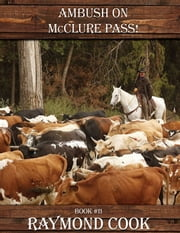 Ambush On McClure Pass! ebook by Raymond Cook
