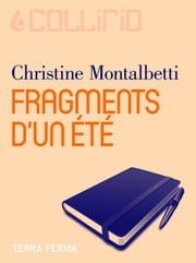 Fragments d'un été ebook by Christine Montalbetti