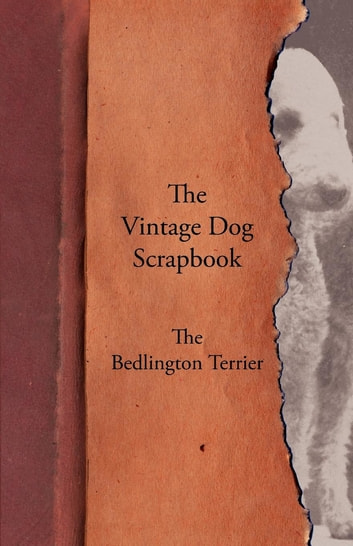 The Vintage Dog Scrapbook - The Bedlington Terrier ebook by Various
