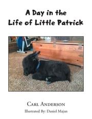A Day in the Life of Little Patrick