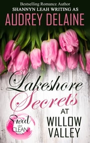 Lakeshore Secrets at Willow Valley ebook by Audrey Delaine