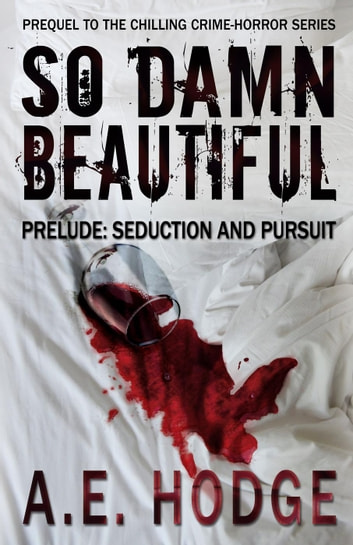 So Damn Beautiful Prelude: Seduction and Pursuit - So Damn Beautiful ebook by A.E. Hodge