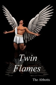 Twin Flames ebook by The Abbotts