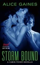 Storm Bound - A Cabin Fever Novella ebook by Alice Gaines