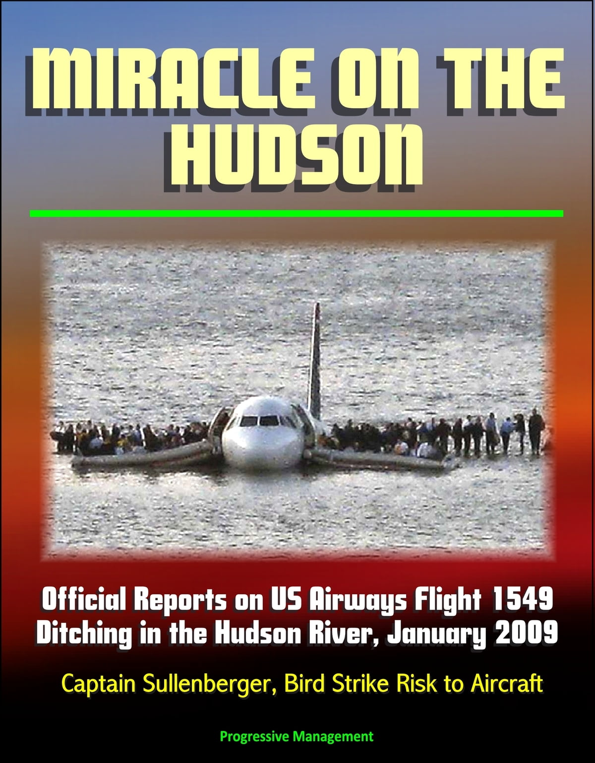 Miracle on the Hudson: Official Reports on US Airways Flight 1549 Ditching  in the Hudson River, January 2009, Captain Sullenberger, Bird Strike Risk