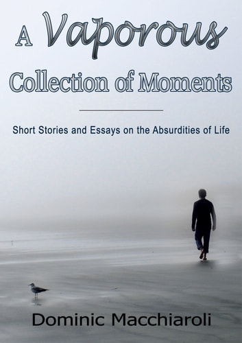 A Vaporous Collection of Moments ebook by Dominic Macchiaroli