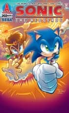 Sonic the Hedgehog #202 ebook by Ian Flynn,Steven Butler,Terry Austin