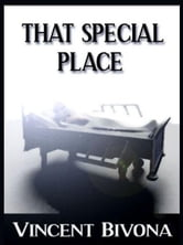 That Speical Place: A Short Story ebook by Vincent Bivona