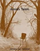 Amish Talon ebook by James Aa. Keister
