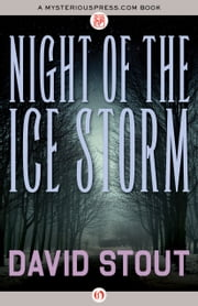 Night of the Ice Storm ebook by David Stout