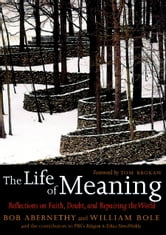 The Life of Meaning - Reflections on Faith, Doubt, and Repairing the World ebook by