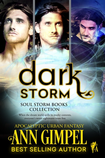 Dark Storm - Soul Storm Books Collection ebook by Ann Gimpel