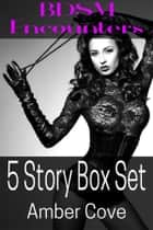 BDSM Encounters - 5 Story Box Set ebook by Amber Cove