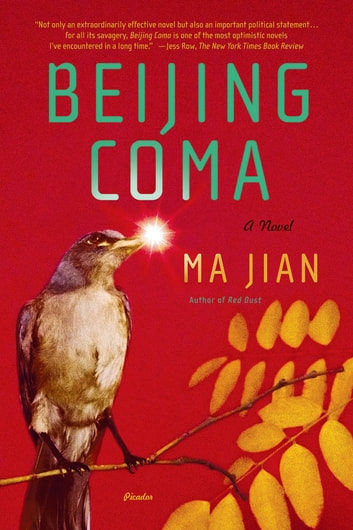 Beijing Coma - A Novel ebook by Ma Jian