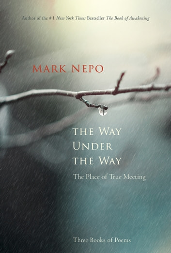 The Way Under the Way - The Place of True Meeting ebook by Mark Nepo