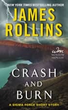 Crash and Burn ebook by James Rollins