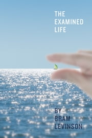 The Examined Life ebook by Bram Levinson