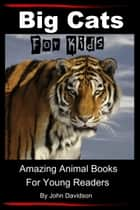 Big Cats: For Kids - Amazing Animal Books for Young Readers eBook by John Davidson
