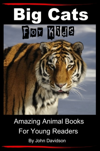 Big cats for kids amazing animal books for young readers ebook big cats for kids amazing animal books for young readers ebook by john davidson fandeluxe Ebook collections