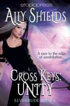 Cross Keys: Unity ebook by Ally Shields