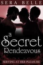 A Secret Rendez-vous - Serving at Her Pleasure, Vol. 1 ebook by Sera Belle