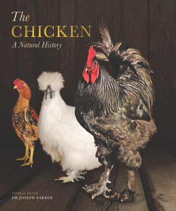 The Chicken - A Natural History ebook by Joseph Barber Dr.