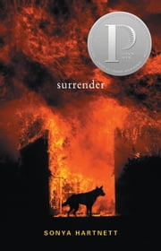 Surrender ebook by Sonya Hartnett