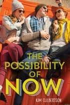 The Possibility of Now ebook by Kim Culbertson