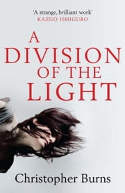 A Division of the Light ebook by Christopher Burns