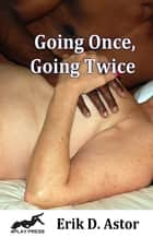 Going Once, Going Twice ebook by Erik D. Astor