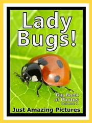 Just Ladybug Photos! Big Book of Lady Bug Photographs & Bugs Pictures of Ladybugs, Vol. 1 ebook by Big Book of Photos