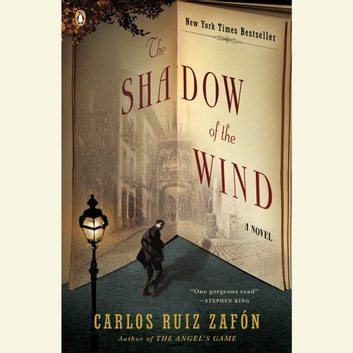 The Shadow of the Wind audiobook by Carlos Ruiz Zafon