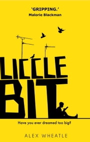 Liccle Bit ebook by Alex Wheatle