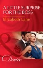 A Little Surprise For The Boss (Mills & Boon Desire) ebook by Elizabeth Lane