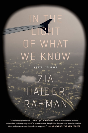 In the Light of What We Know - A Novel ebook by Zia Haider Rahman