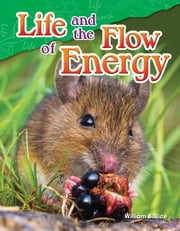 Life and the Flow of Energy ebook by William B. Rice