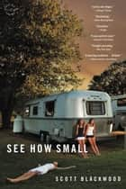 See How Small - A Novel ebook by Scott Blackwood