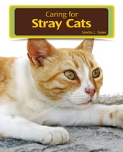 Caring for Stray Cats ebook by Sandra L. Toney