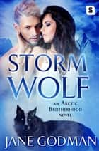 Storm Wolf - A Shifter Romance (Arctic Brotherhood, Book 3) ebook by Jane Godman