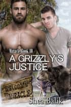 A Grizzly's Justice, Miracle Book 10 eBook by Shea Balik