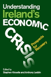 Understanding Ireland's Economic Crisis: Prospects for Recovery ebook by Stephen Kinsella,Anthony Leddin