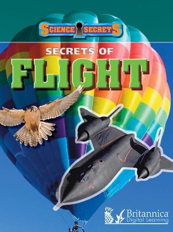 Secrets of Flight ebook by Andrew Solway