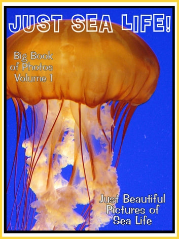 Just Sea Life Photos! Big Book of Marine Sealife Photographs & Pictures Vol. 1 ebook by Big Book of Photos