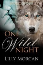 One Wild Night ebook by Lilly Morgan