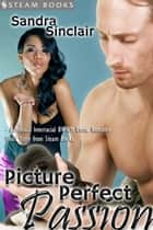 Picture Perfect Passion - A Sexy Interracial BWWM Erotic Story from Steam Books ebook by Sandra Sinclair, Steam Books