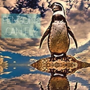 Penguins Can Fly ebook by Nadia Mounib